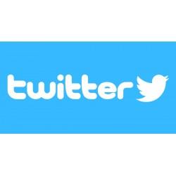 Pack 100 comptes Twitter.com