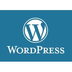 Pack 1000 comptes Wordpress.com